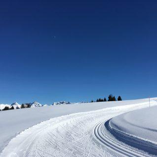 Traces ski de fond