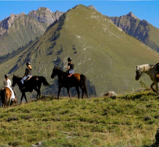 Randonnée à cheval Praz de Lys Sommand