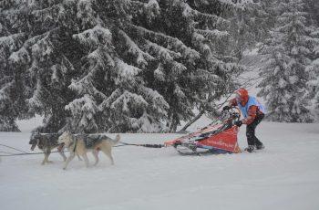 Grande Odyssée Savoie Mont-Blanc et Odyssée des Enfants 13 janvier 2020