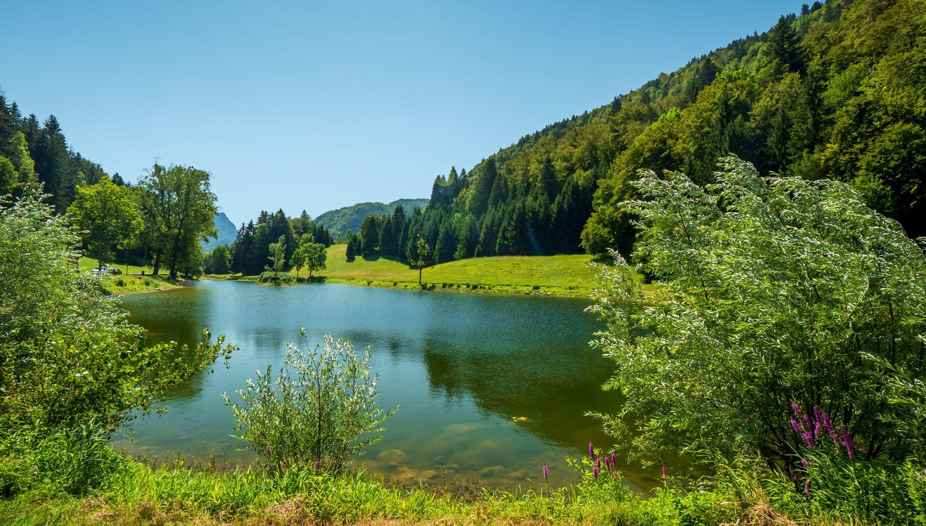 Pêche - Lac d'Anthon Mieussy